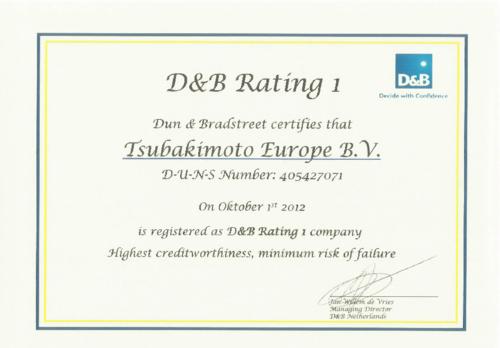 D&B Rating 1 certificate 2012